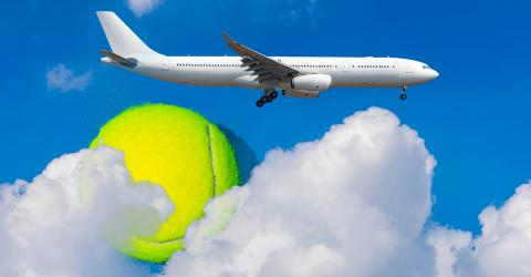 This is why you should always bring a tennis ball when travelling