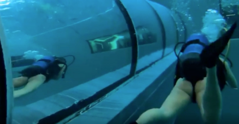 This Is What Free Diving in the World's Deepest Pool Is Like