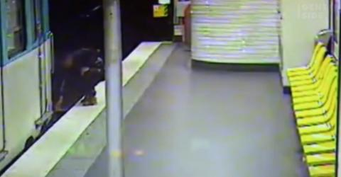 He Stole a Man's Wallet, but Moments Later He Saved His Victim's Life