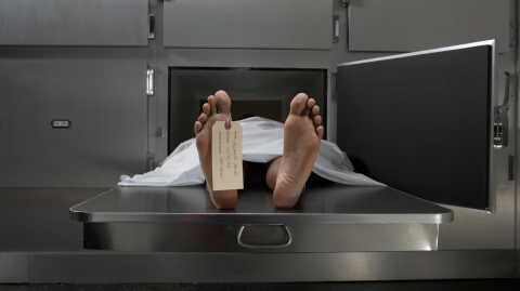 Coming back from the dead is not as uncommon as you might think