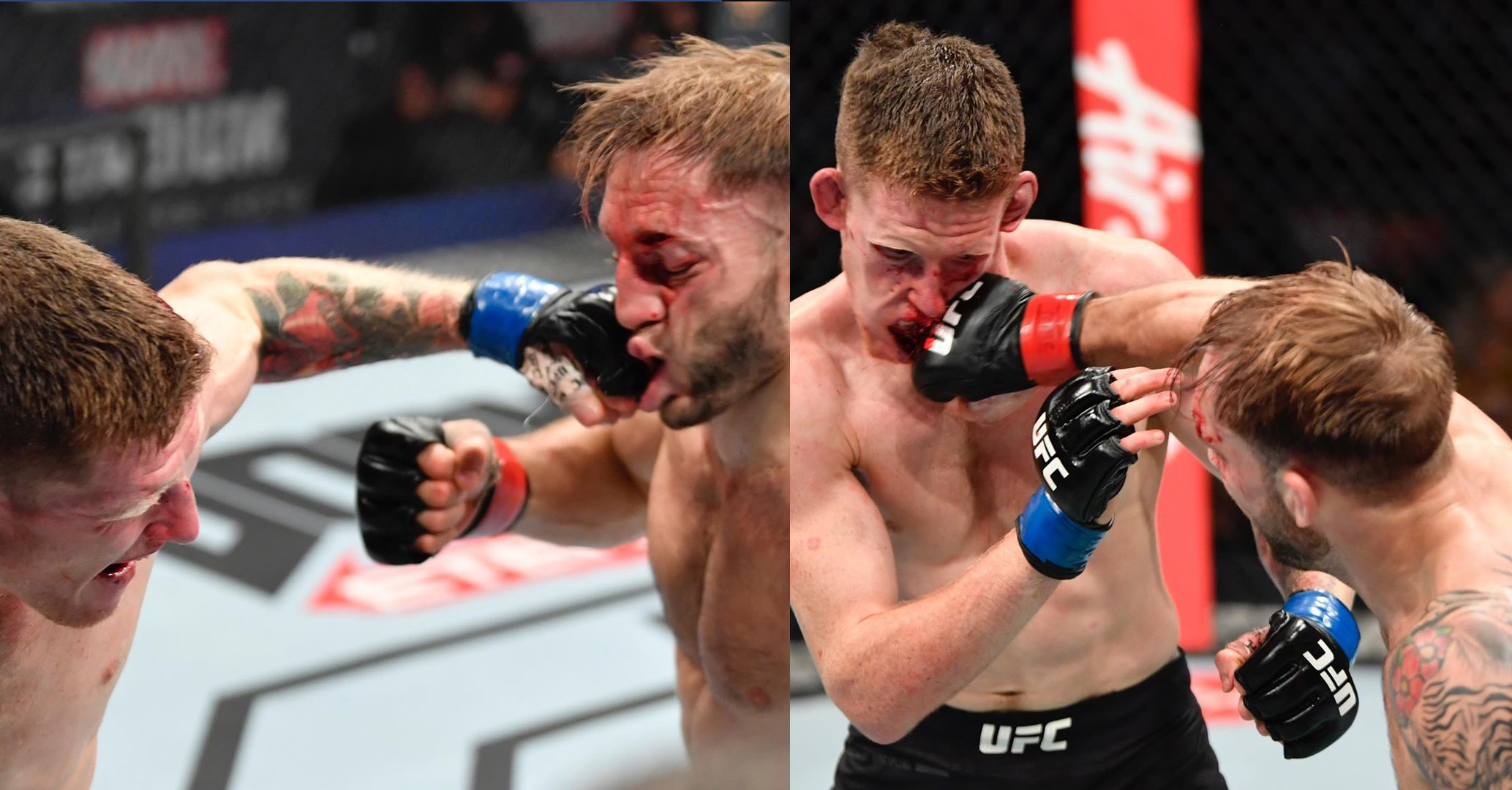 The Round Of The Year Was At The UFC, With These Two Fighters Who Were Both Almost KO'd
